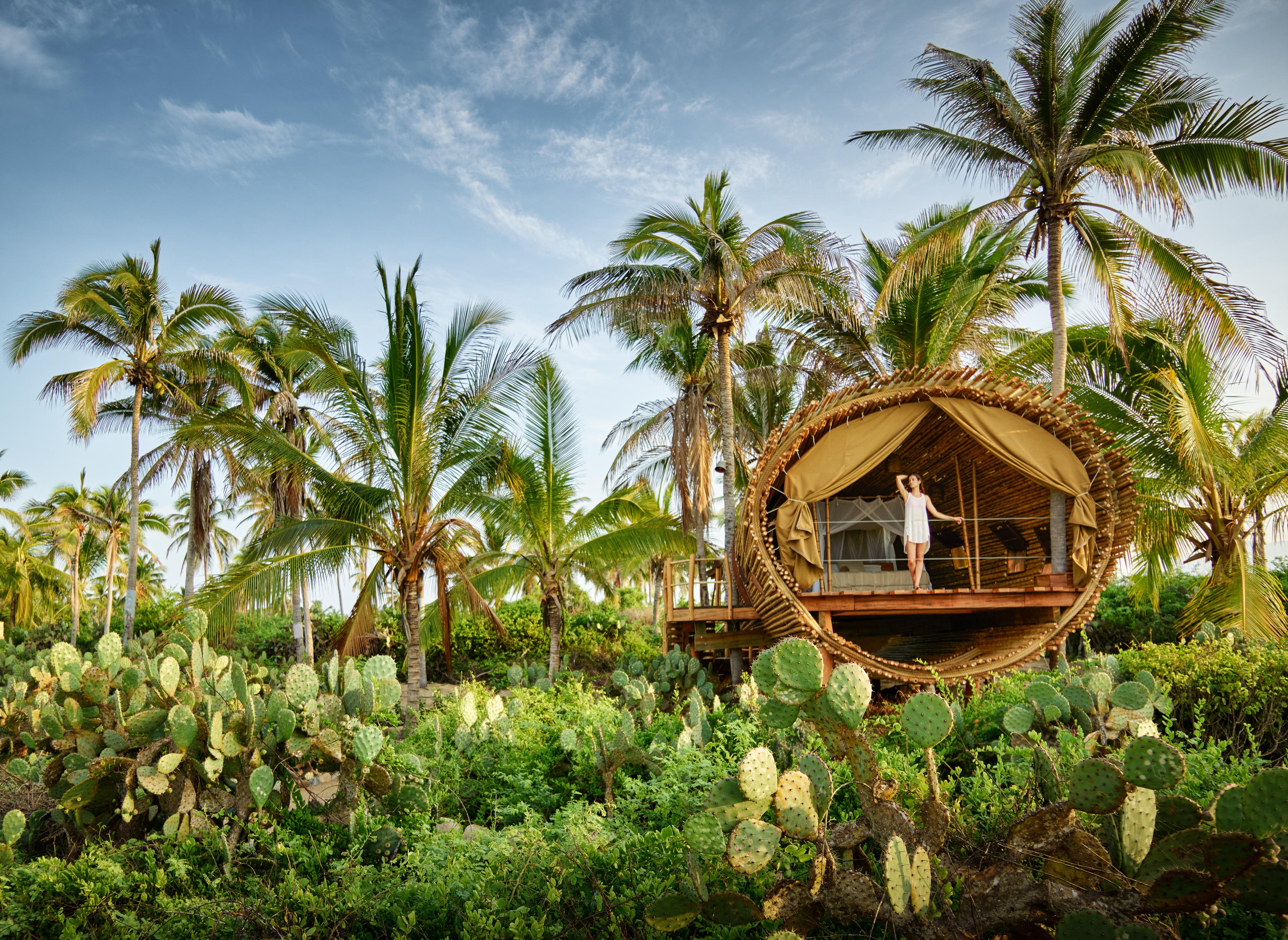Photo courtesy of Playa Viva – Treehouse image by kevsteele